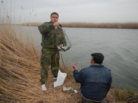 ловля шемаи в ростовской области
