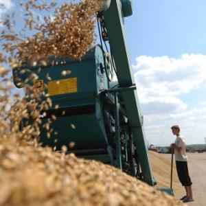 На развитие агропромышленного комплекса края из федерального бюджета направлено более одного миллиарда рублей, пишет «СП»