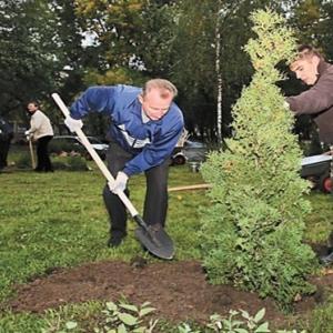В выходные, 5 и 6 апреля, в Ставрополе пройдет высадка новых деревьев