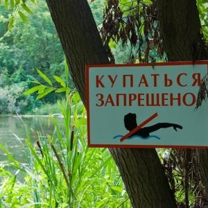 Специалисты Управления Роспотребнадзора по Ростовской области обнаружили в ряде донских водоемов холероподобную микрофлору.