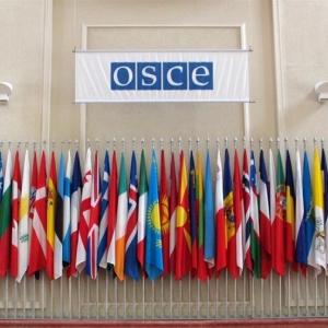 По данным РИА Новости, 29 июля в Ростовскую область прибудут 13 из 19 наблюдателей ОБСЕ. Остальные 6 членов миссии приедут в Ростов 30-31 июля.