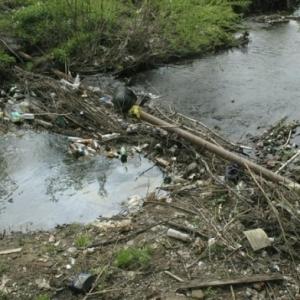 В Ростовской области в в рамках государственной программы «Охрана окружающей среды и рациональное природопользование» расчистят более 7 км рек