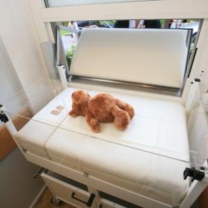 Это второе «окно жизни» для приема новорожденных детей на Ставрополье