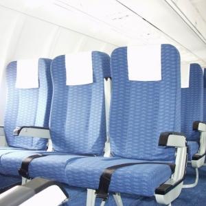 """Болельщик питерского """"Зенита"""" устроил дебош на борту самолета, летевшего из Краснодара в Санкт-Петербург. В результате вылет рейса был задержан"""