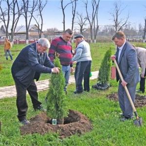 Около 90 тысяч деревьев и кустарников высадят добровольцы завтра, 11 октября. Об этом сообщает пресс-служба администрации Ростовской области
