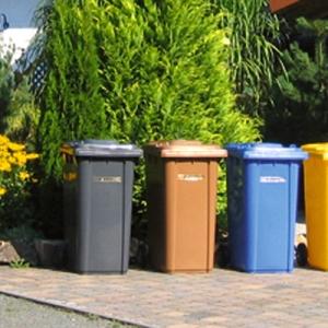 В Ростове-на-Дону депутаты решили отменить запрет на бесконтейнерный сбор отходов