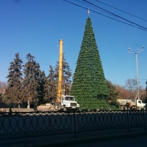главная новогодняя елка Ростова-на-Дону