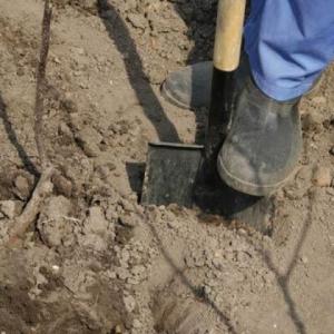 Представители пресс-службы Следственного комитета России по Ростовской области сообщили, что недавно на территории Каменского района удалось обнаружить скелет мужчины 46-летнего возраста.