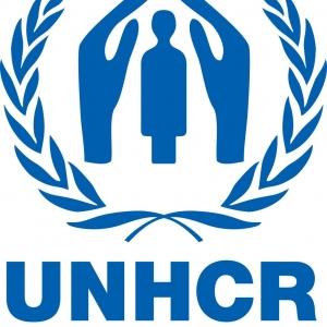 В Ростове-на-Дону прошла встреча представителей международных организаций по делам беженцев, на ней обсуждались проблемы вынужденных переселенцев из Украины.