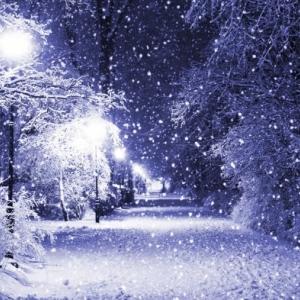 Ростов-на-Дону: снег будет идти всю ночь и до обеда