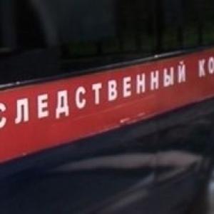 Следователи СК РФ по Ростовской области завершили расследование дела в отношении экс-министра труда и соцразвития Елены Скидан и его заместителя Михаила  Медведева.