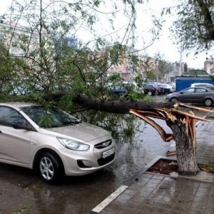 Последствия урагана в Ростове начинают оплачивать.