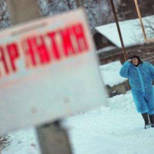 В Ростовской области, на отдельной территории хутора Поповского, расположенного в Терновском сельском поселении Шолоховского района, был введен карантин по бешенству.