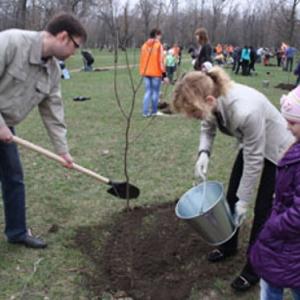 В Ростовской области Весенний День древонасаждения, который проходит во вторую субботу апреля в этом году состоится на неделю позже, а именно 18 апреля.