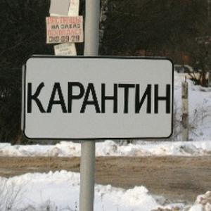 В Кашарском районе, а именно в деревне Сариновка, что в Фомино-Свечниковском сельском поселении, после диагностирования бешенства у собаки до 23 апреля 2015 года действует карантин по бешенству.