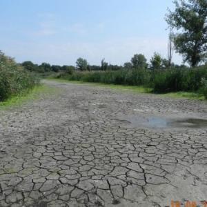 Массовые перебои с водоснабжением могут случиться во многих поселениях Ростовской области. Объём половодья в этом году прогнозируется на уровне 35-36% от нормы, а значит, нехватка питьевой воды этим летом неизбежна