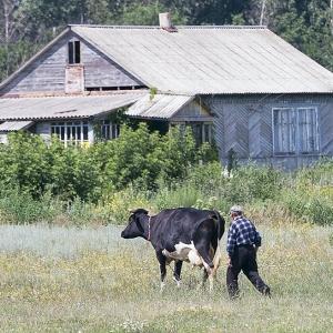 В этом году Ростовская область получит из федерального бюджета 215 миллионов рублей, из которых больше 178 миллионов предназначены для улучшения жилищных условий молодых специалистов и других жителей села.