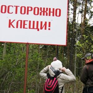 Согласно информации, полученной от областной станции по борьбе с болезнями животных, на территории Ростовской области ежедневно растёт активность клещей.
