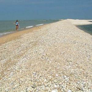 Азовское море становится солоней