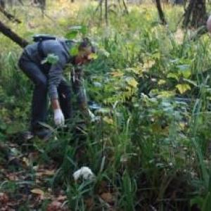 Жуткую находку сделали жители Первомайского района Ростова-на-Дону во время отдыха в роще.