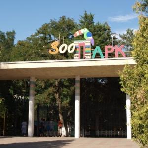 В понедельник, 1 июня, в Международный день защиты детей вход в ростовский зоопарк для всех будет бесплатным