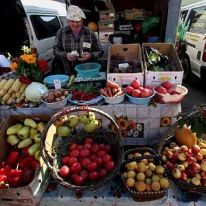 Начался сезон сбора урожая ягод, фруктов, овощей, и в городе участились случаи незаконной торговли ими