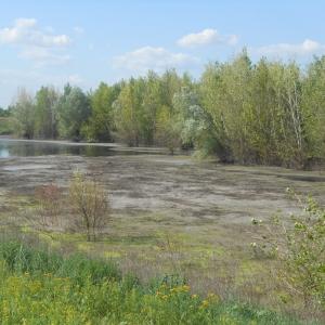 Жители г Миллерово (Ростовская область) по-прежнему винят «Амилко» в загрязнении окружающей среды