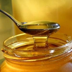 Донские ветврачи будут выявлять поддельный мед