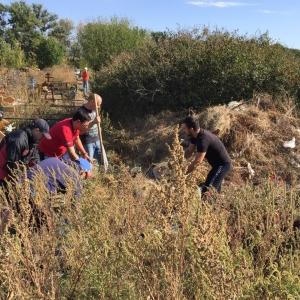 С Северного кладбища Ростова-на-Дону вывезли рекордные 930 тонн мусора