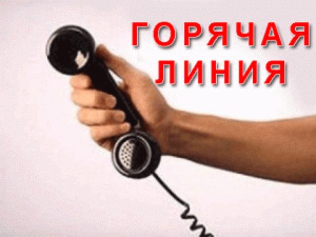 «Горячая линия» Кадастровой палаты:  о чем вы спрашивали