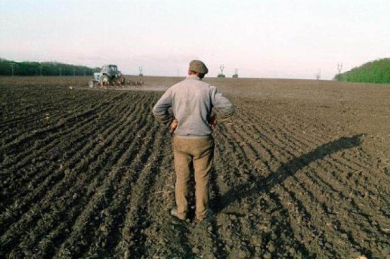 Где оценочная земельного пая в ростове на дону